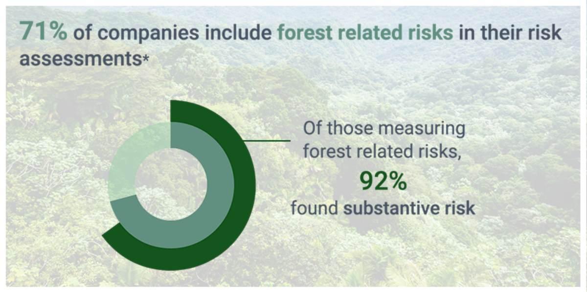 aziende e deforestazione