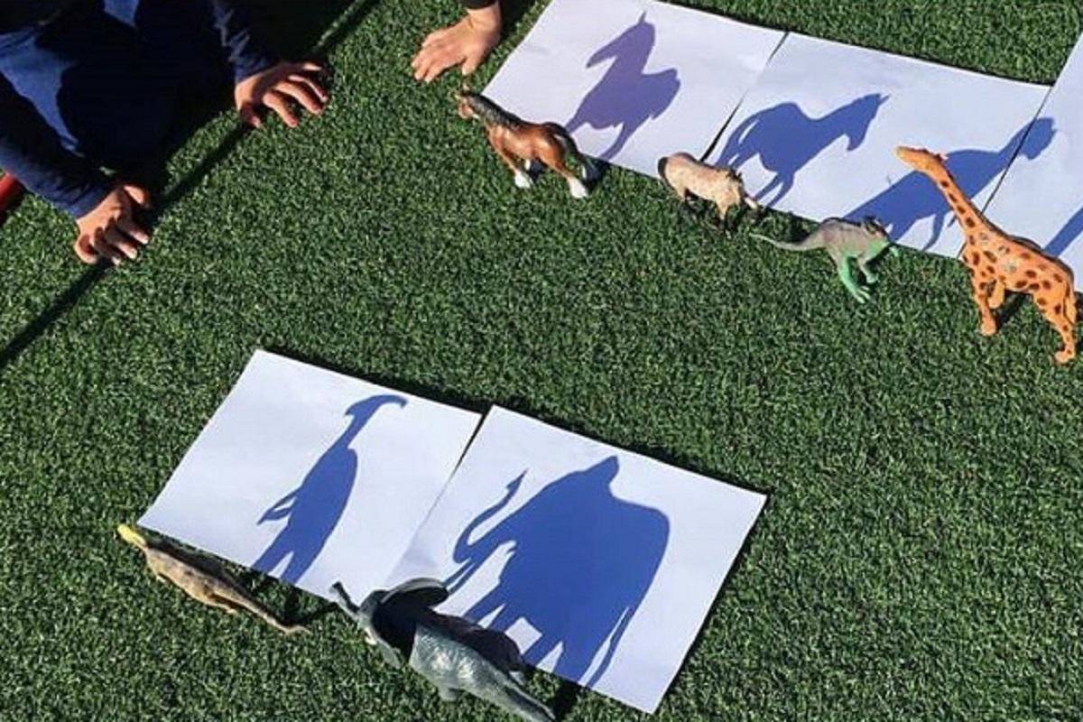 Disegno delle ombre