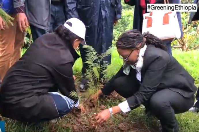 Piantumazione alberi in Etiopia