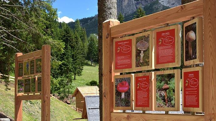 Il parco giochi delle Dolomiti gratuito e immerso nella natura, con percorsi sensoriali per grandi e piccini - GreenMe.it