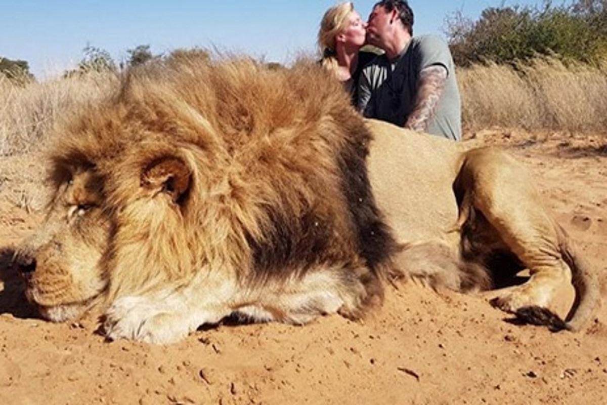 Leone trofeo in sudafrica