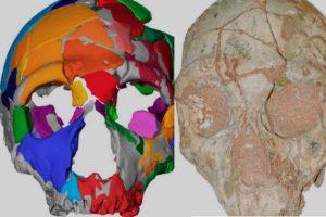 teschi fossili homo sapiens