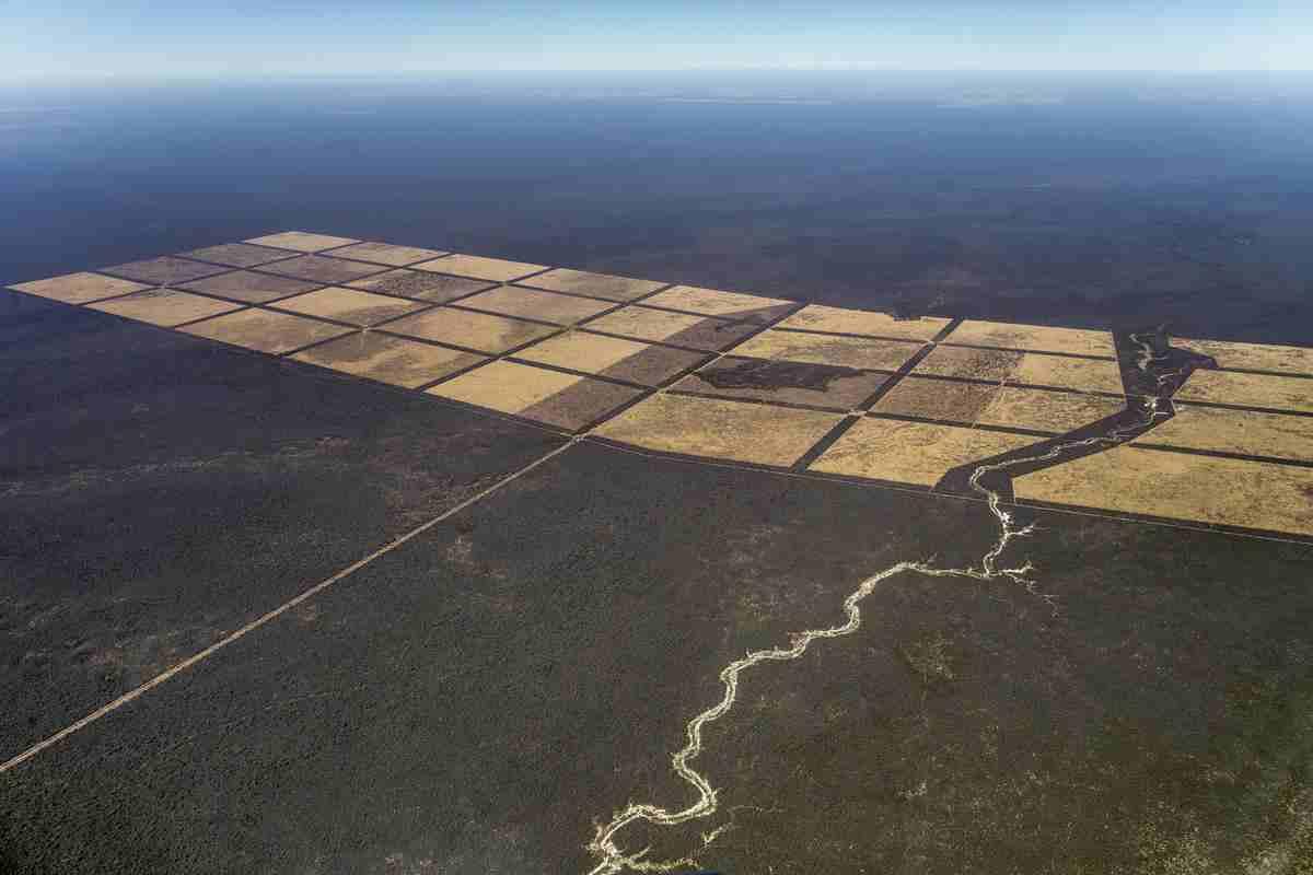deforestazione chaco