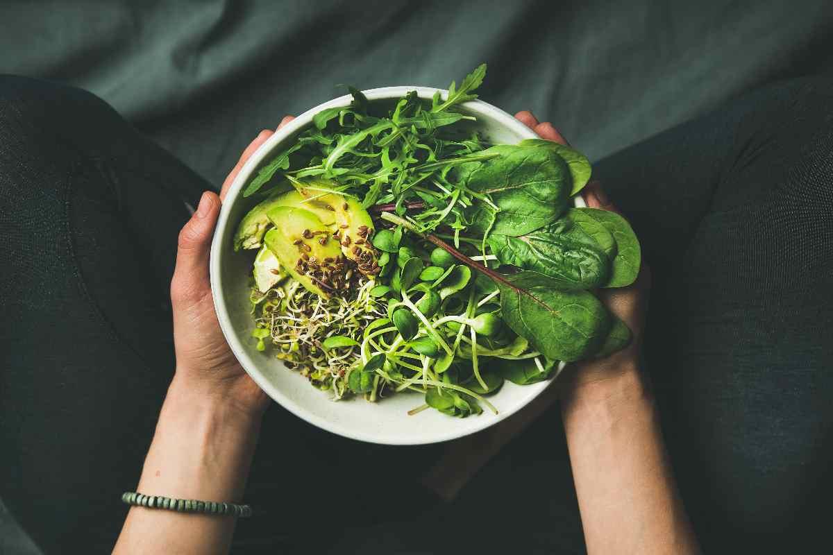 dieta vegana colina