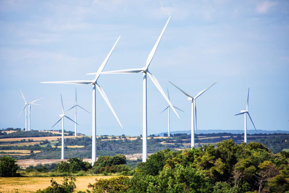 energia eolica texas carbone 2019