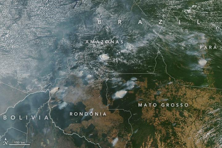 Incendi foresta amazzonica 2019