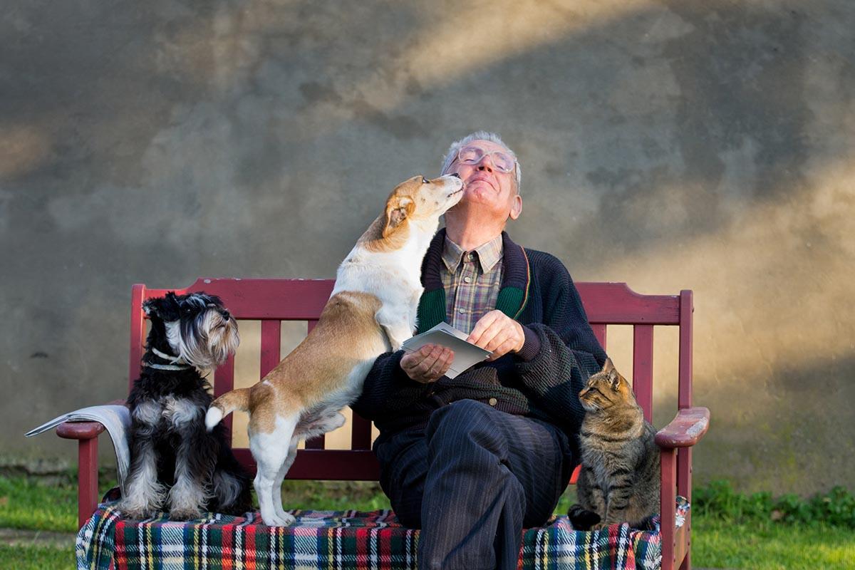 animali-domestici-anziano