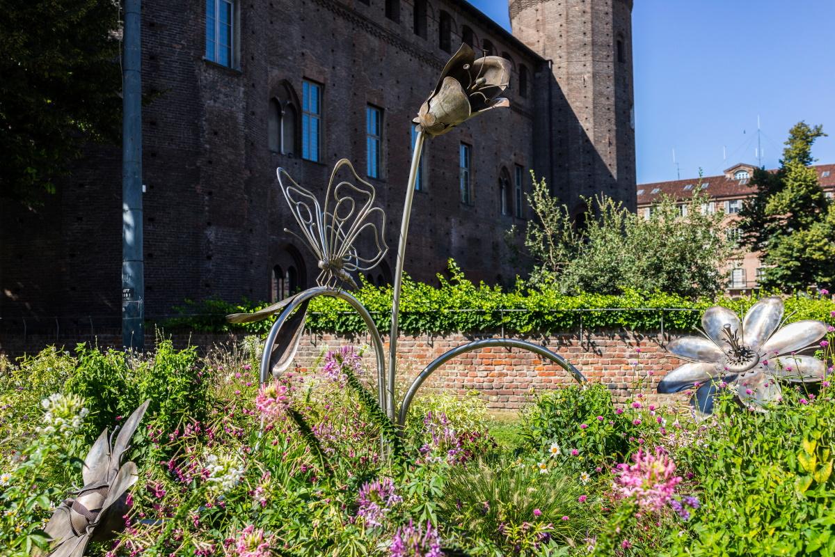 Farfalle Torino