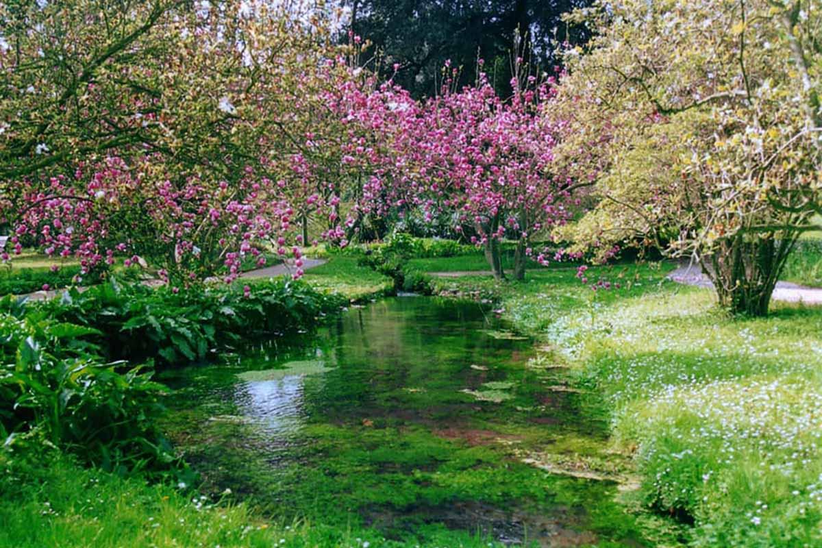 giardino-ninfa