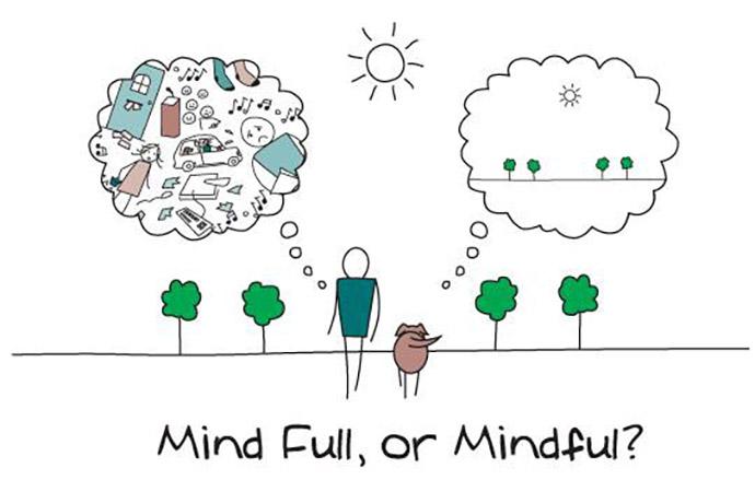 mind-full-o-mindful