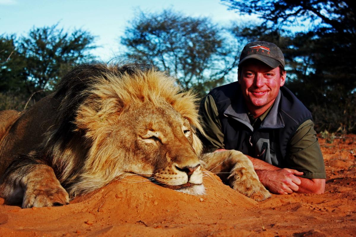 Caccia ai leoni