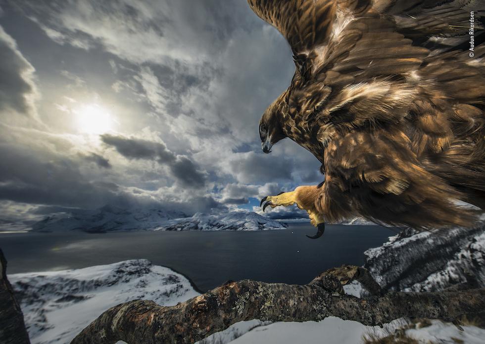 Land of the Eagle di Audun Rikardsen
