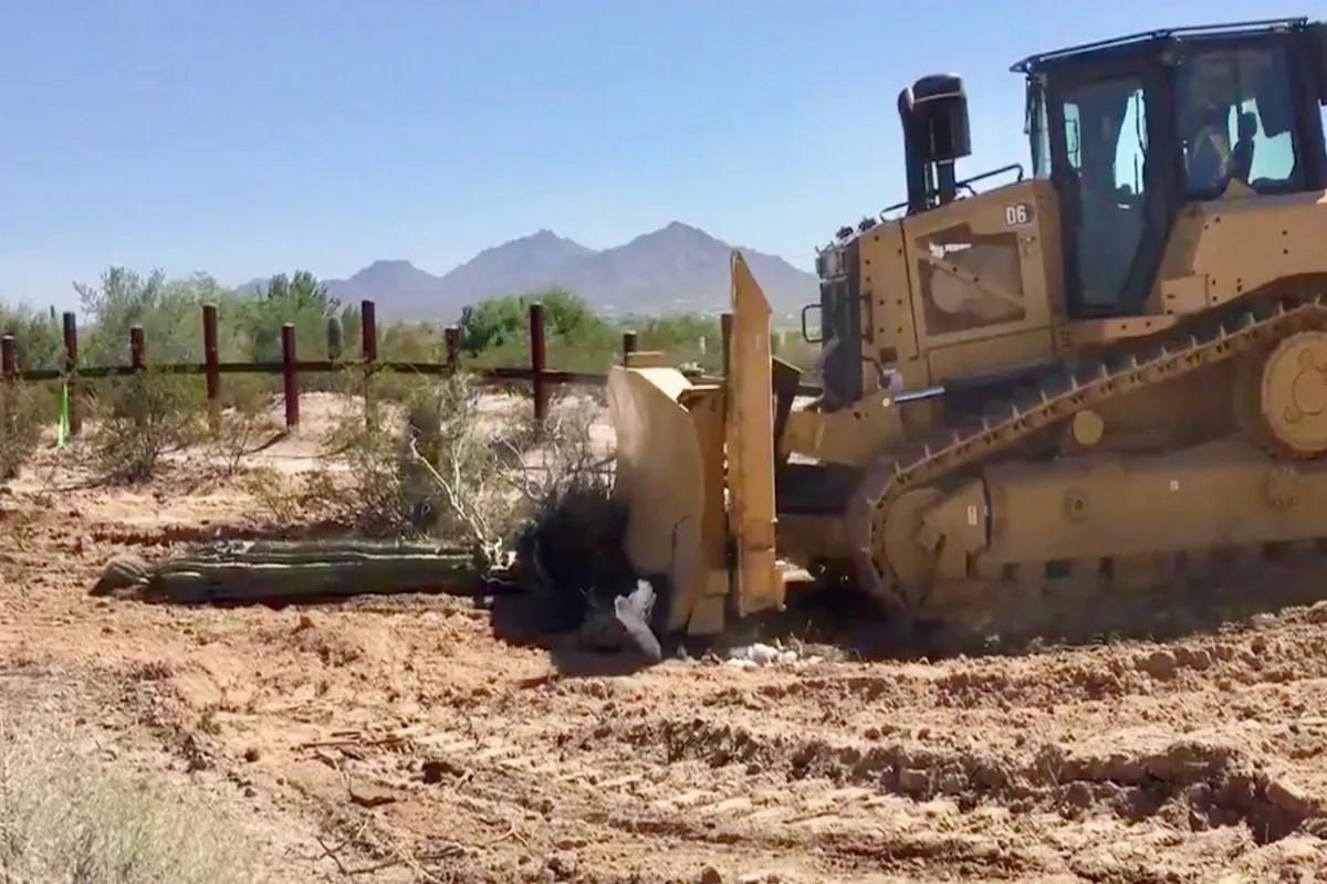 Distruzione cactus Arizona