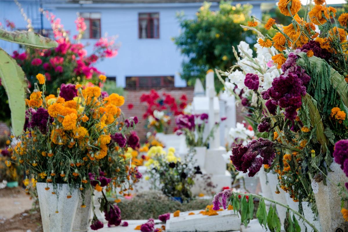 Cimiteri Dia de muertos