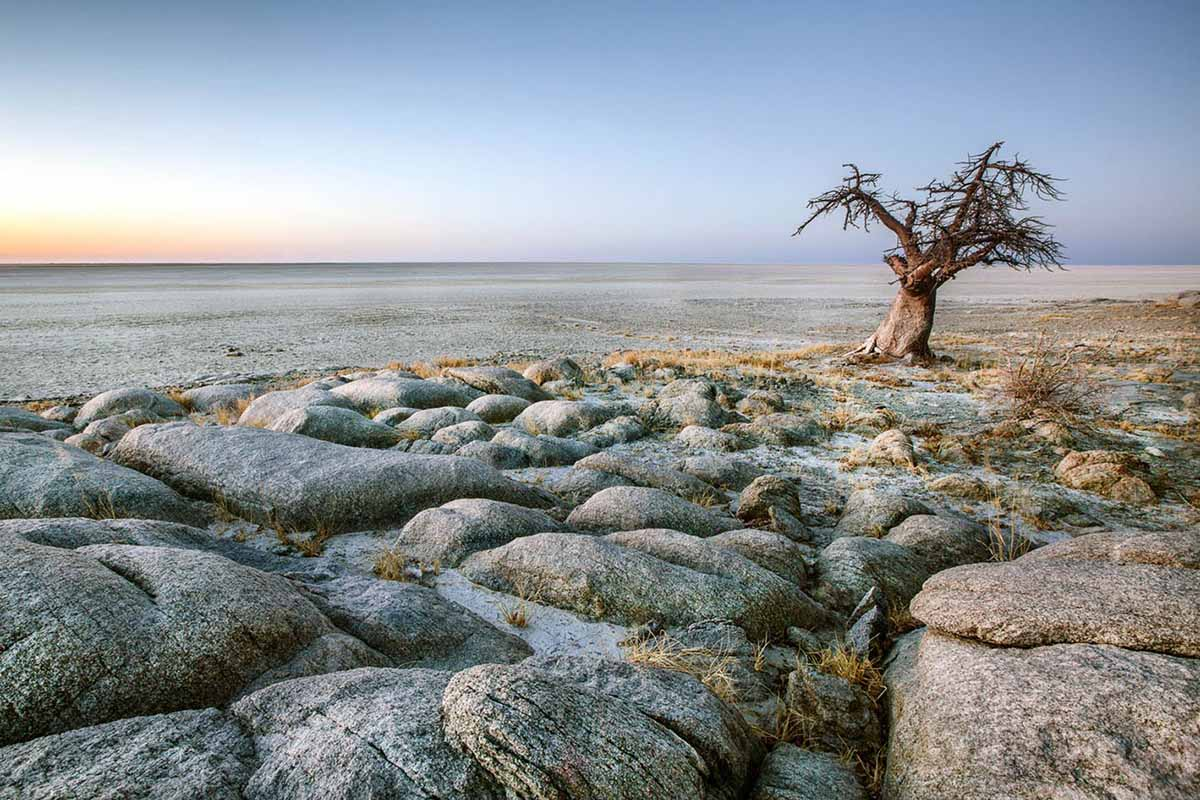 Makgadikgadi-Okavango