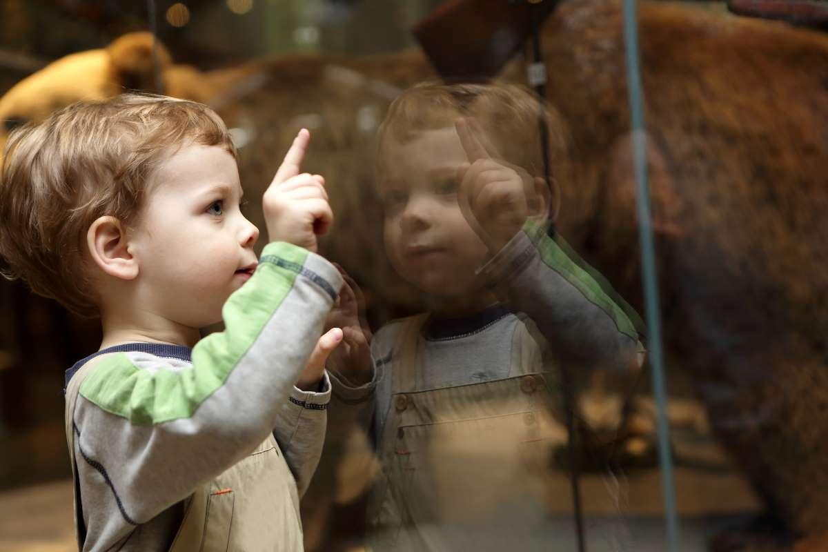 museo bambini malati