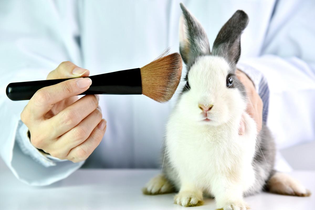 Test dei cosmetici sugli animali