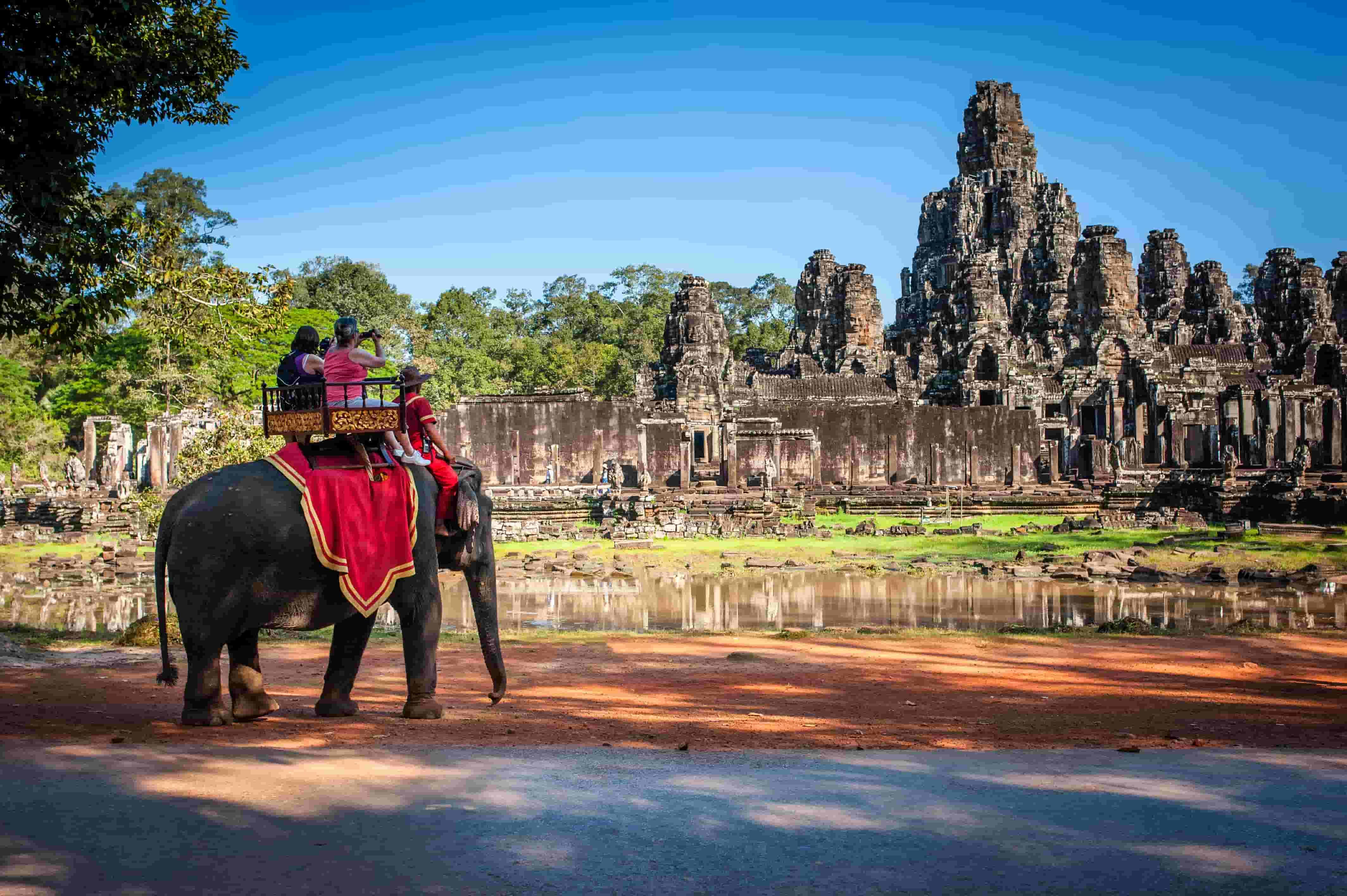 Elefanti tour vietati in Cambogia