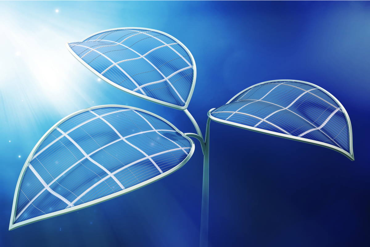 foglia artificiale combustibile alternativo