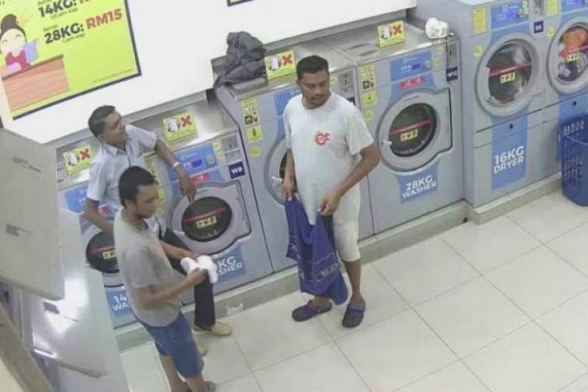 Gatta nell'asciugatrice