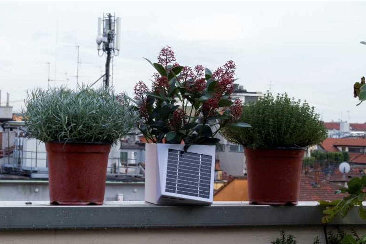 Vasi Per Piante Da Terrazzo a milano arriva arianna, il primo vaso da balcone che misura