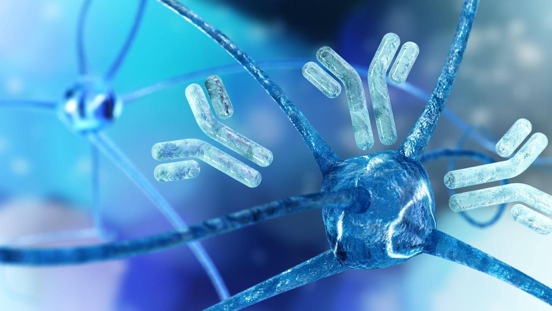 sistema immunitario ed emozioni