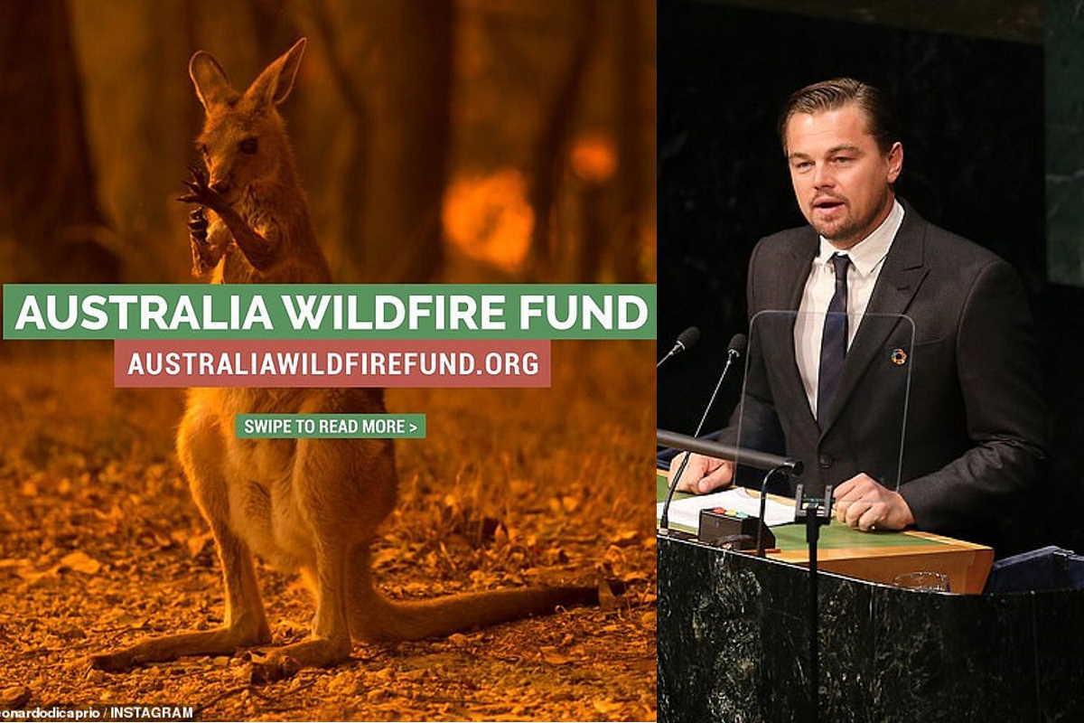 fondo dicaprio australia
