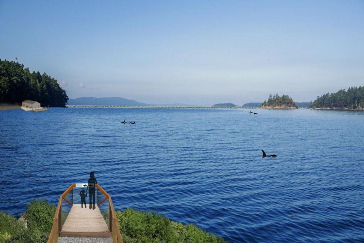 beluga santuario