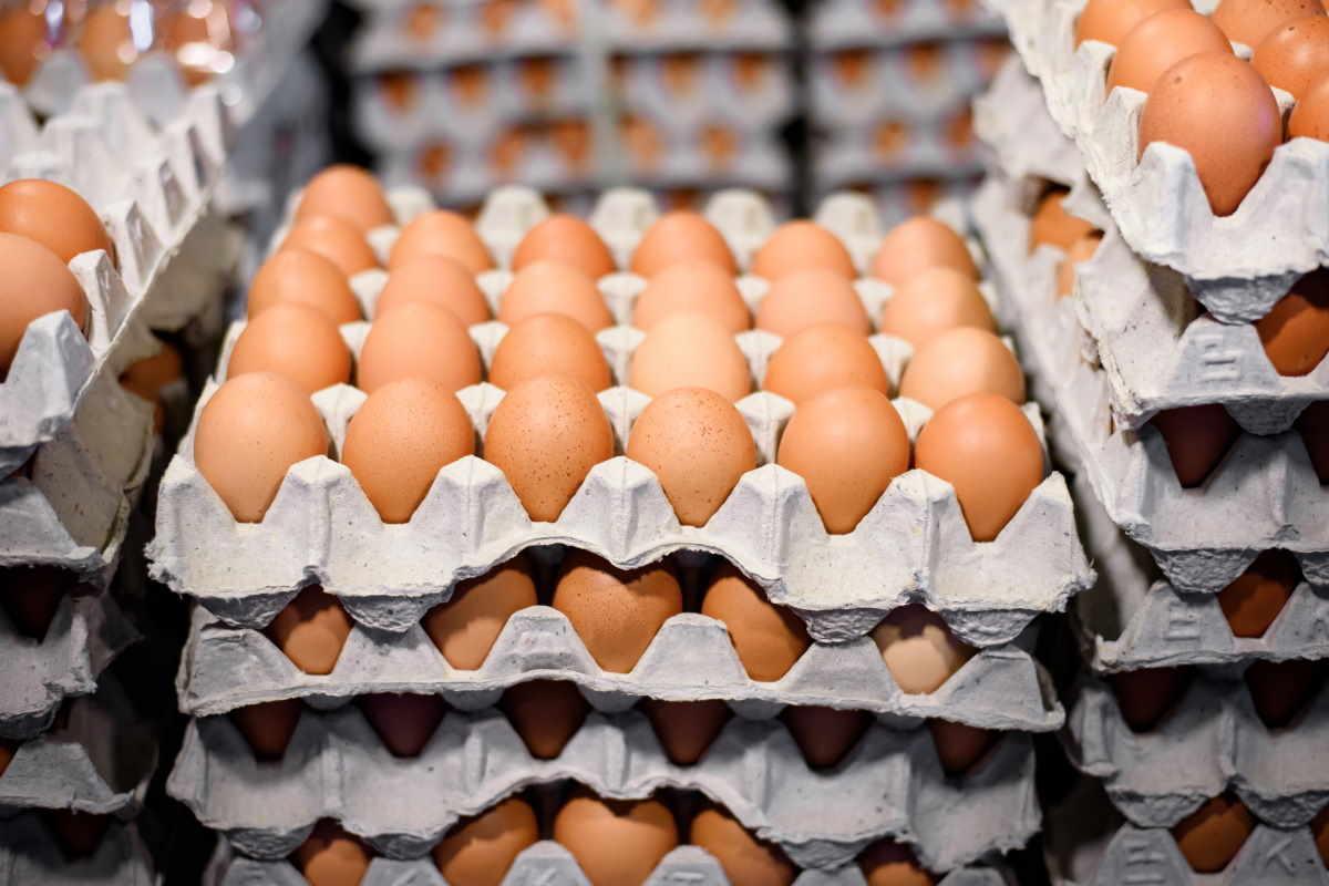 uova confezione