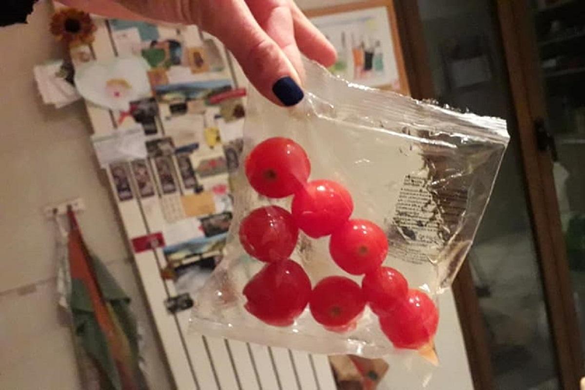 pomodorini scuole
