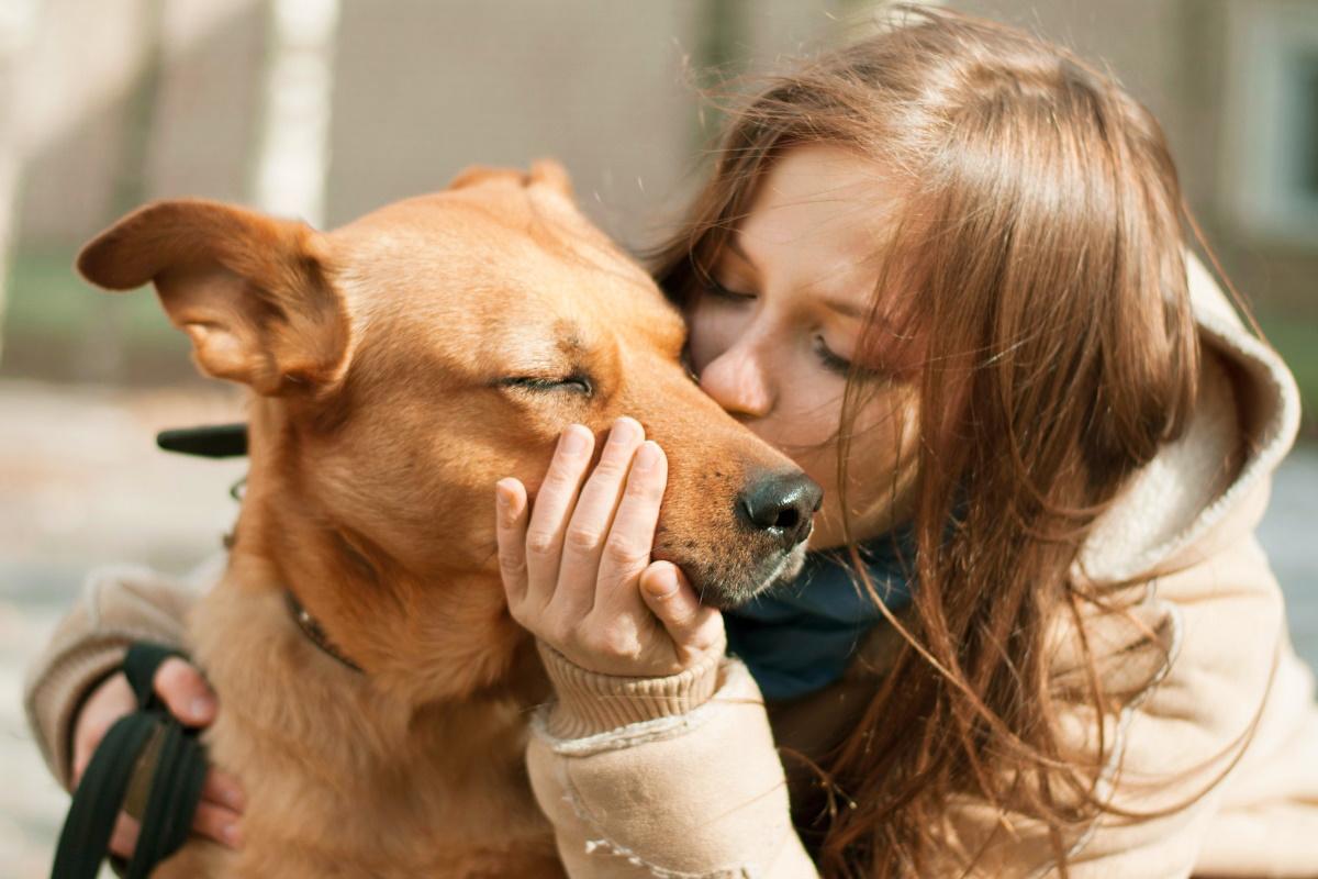 cane amore