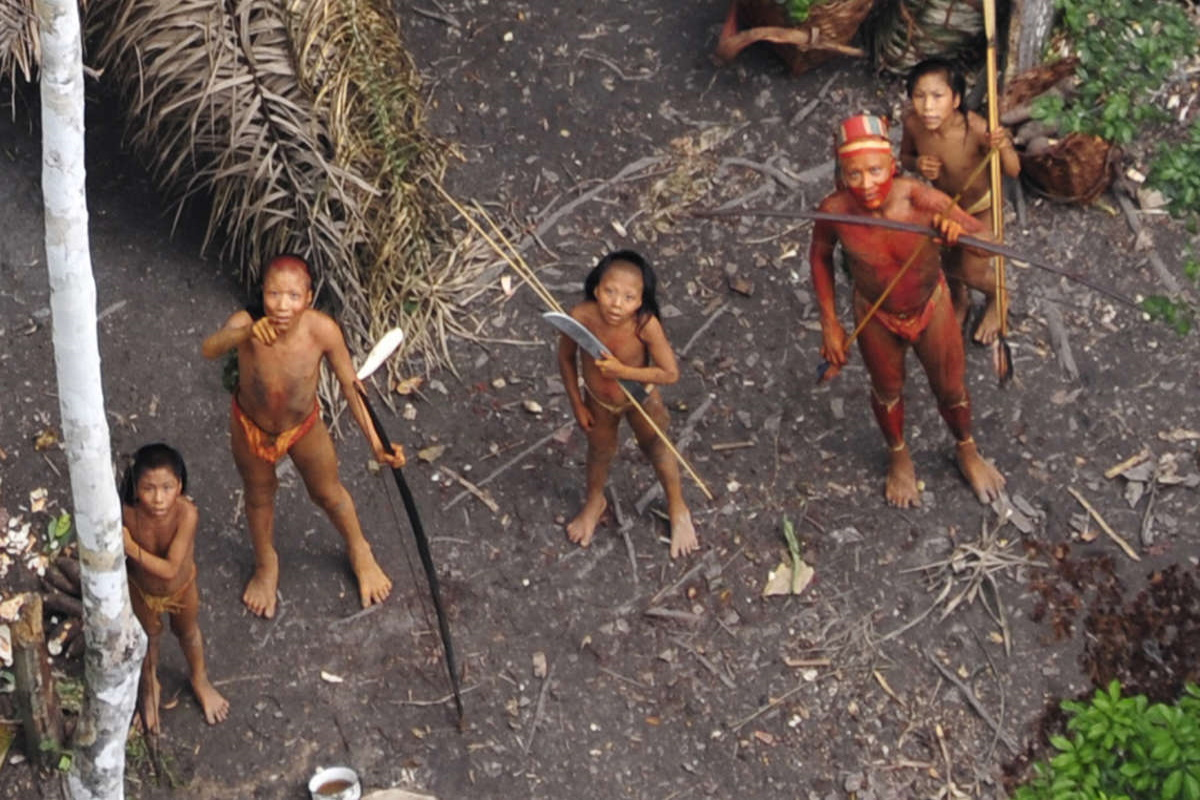 tribu indigene