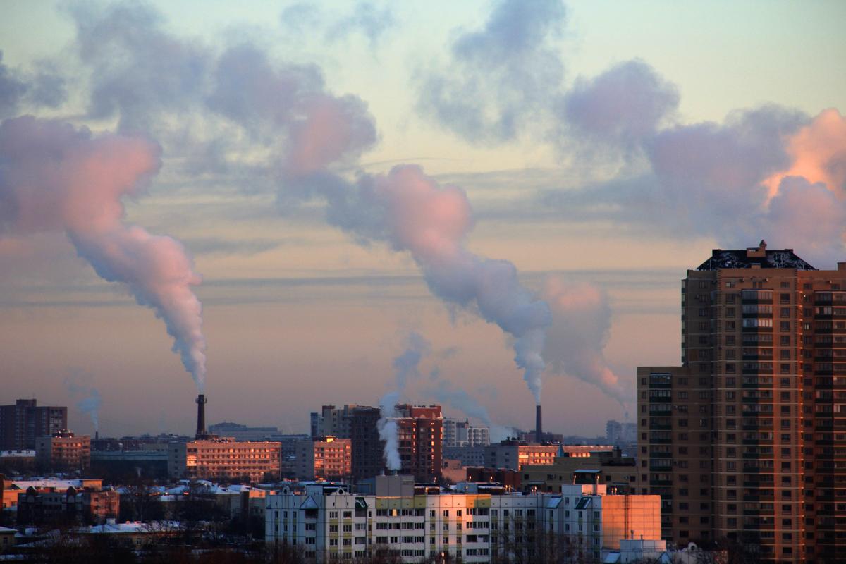 morti inquinamento