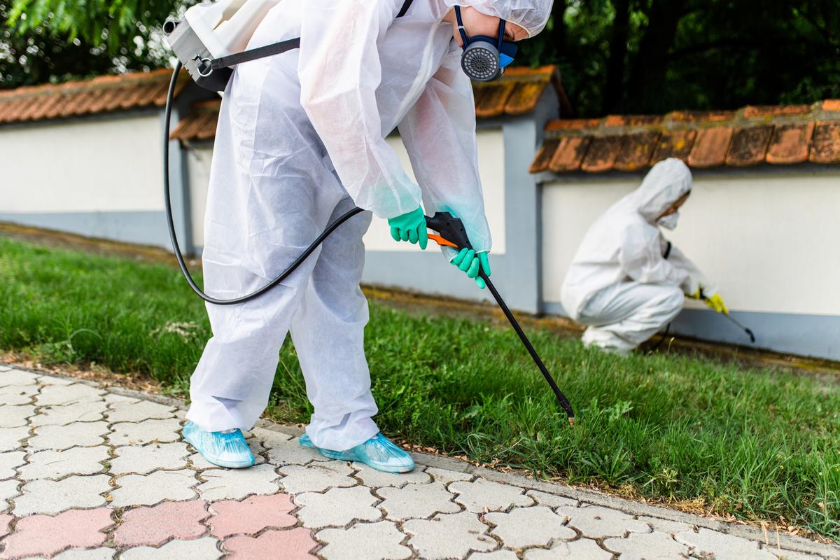 pesticidi casa