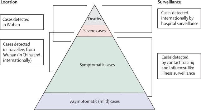 Coronavirus La Piramide Dei Contagi E Della Mortalita In Base Alle Fasce D Eta Nello Studio Del Lancet Greenme