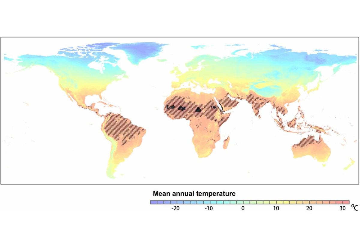 cartina temperature