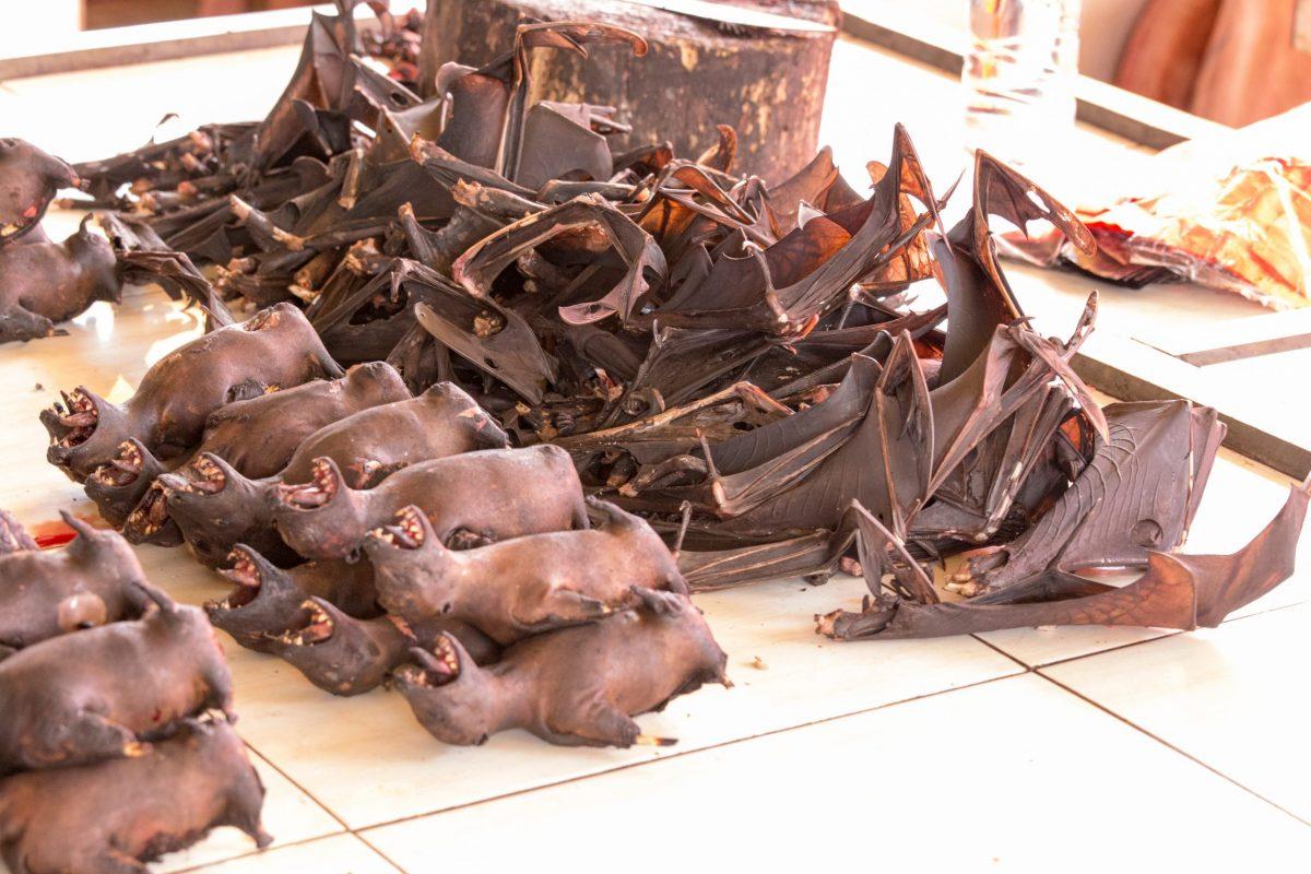 pipistrelli wet market