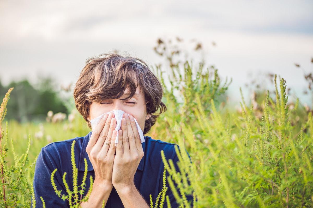 allergia shock anafilattico