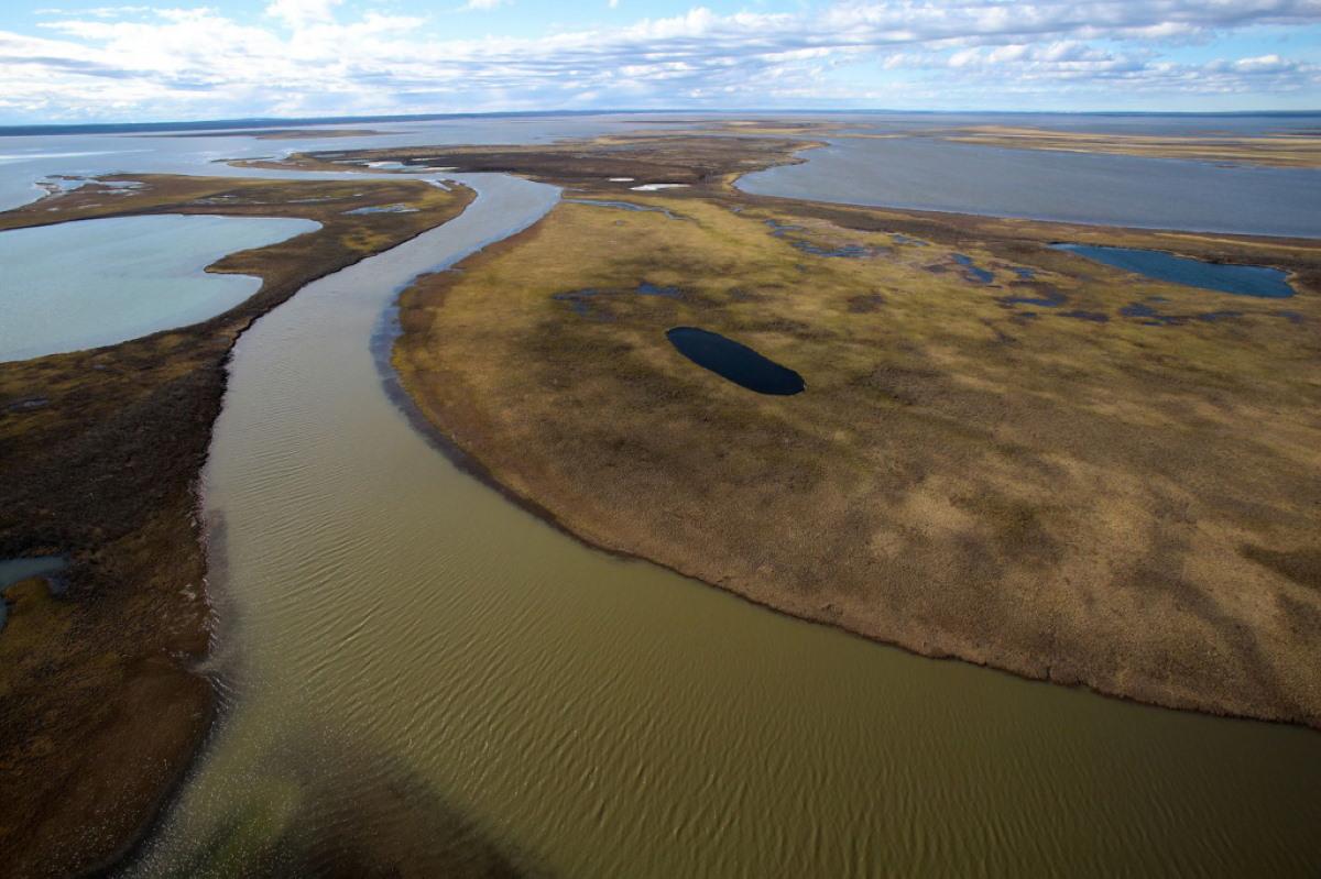 fiume artico petrolio