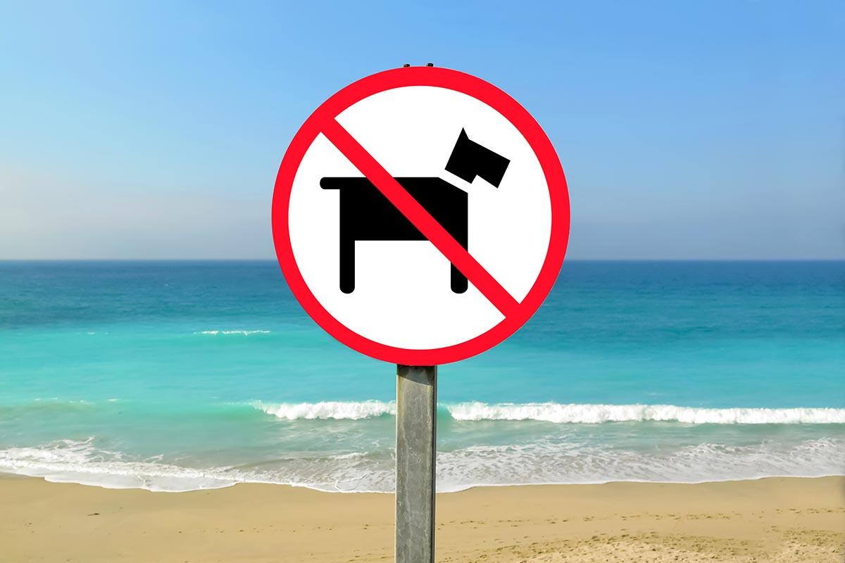 no cani spiaggia