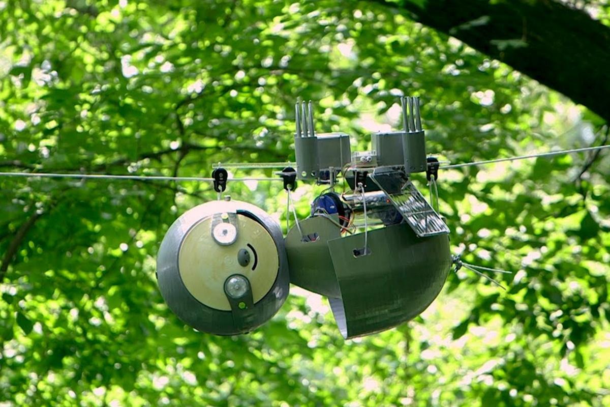Bradipo robot