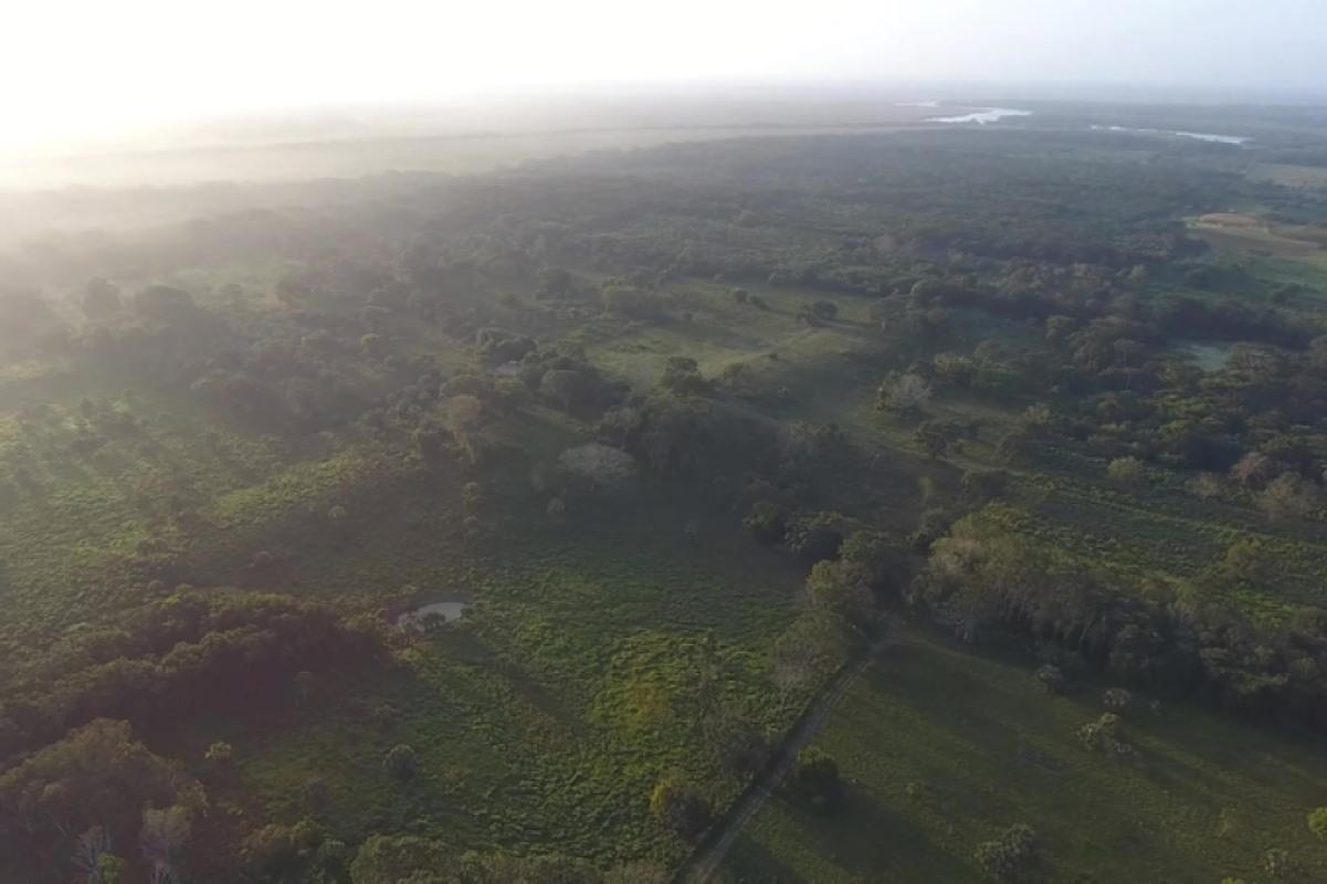 sito maya