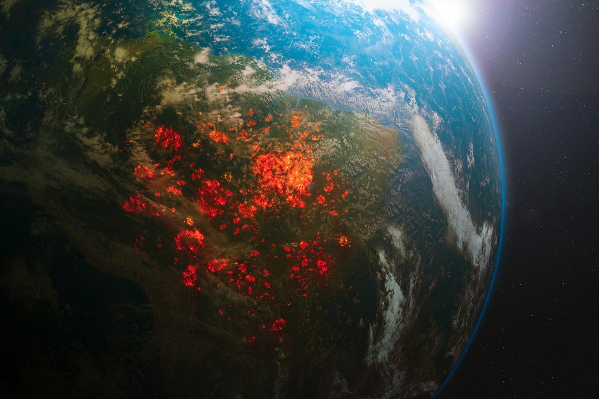 incendi amazzonia foreste