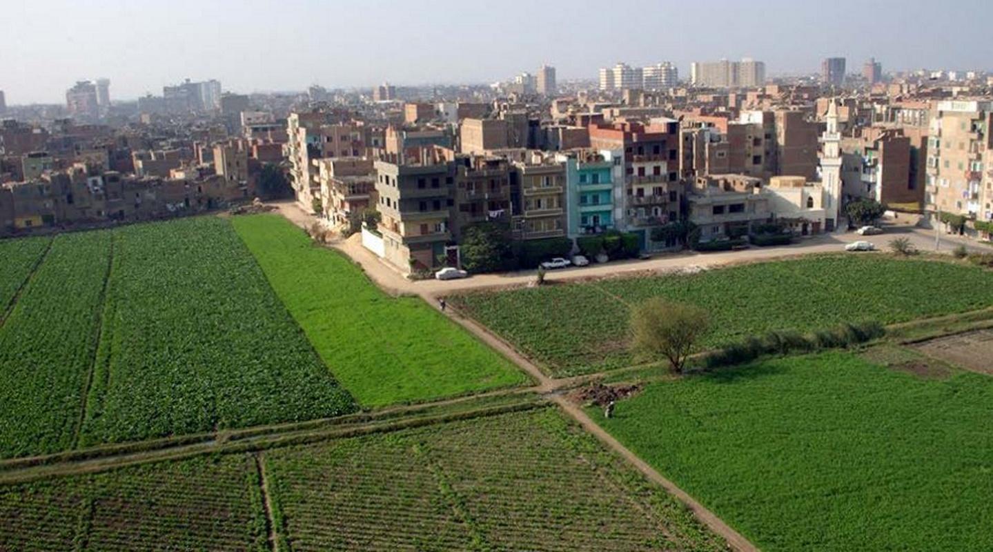 Città verdi FAO