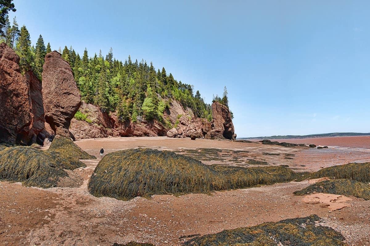 Baia di Fundy