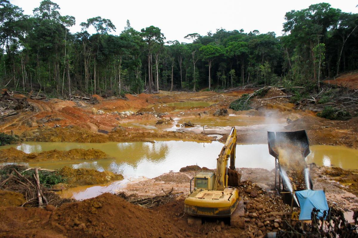 foresta-pluviale-deforestazione