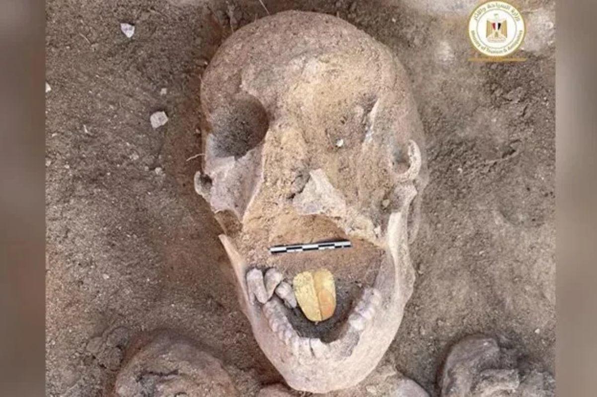 mummia lingua oro
