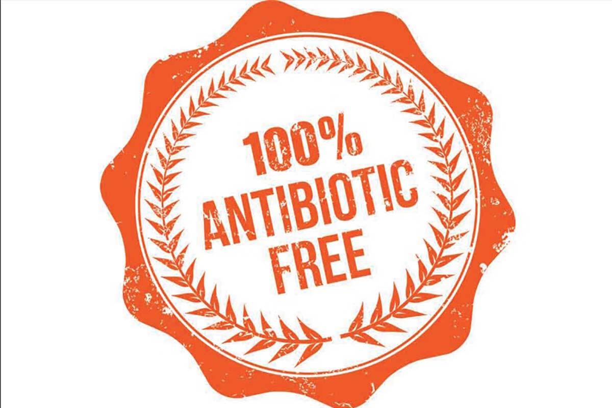 antibiotic free