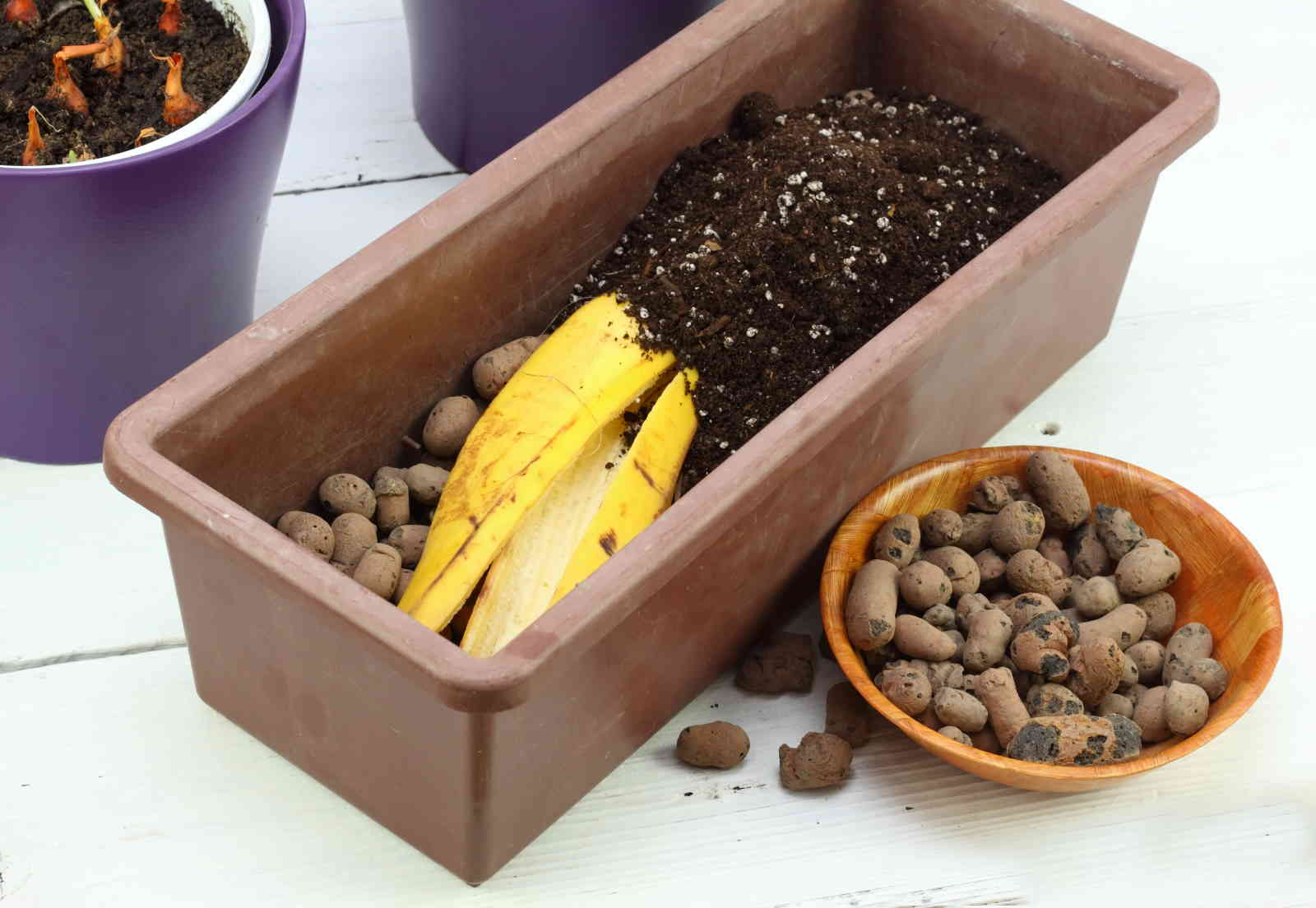 banana fertilizzante