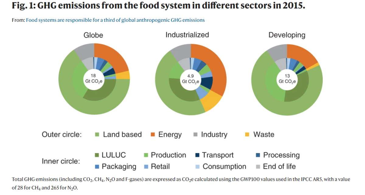 cibo crisi clima